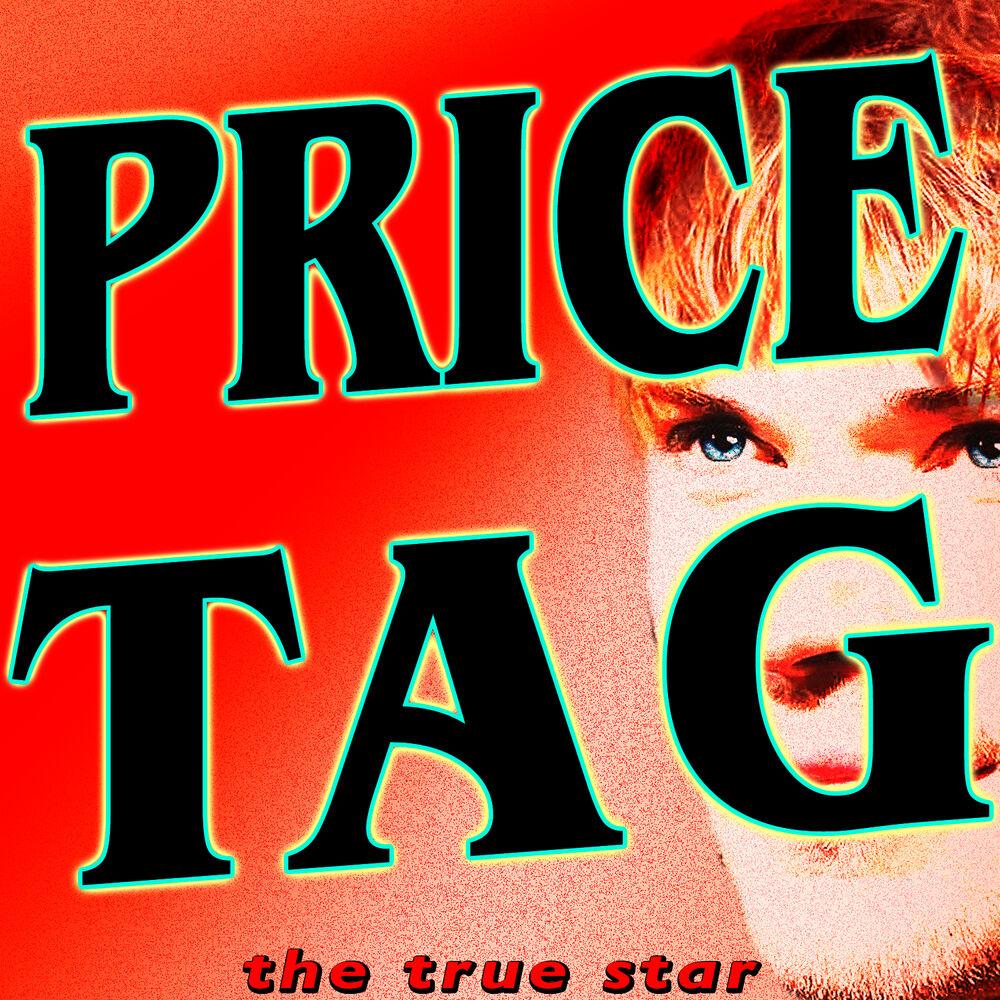 Price Tag (feat, B.O.B)