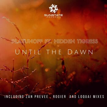 Until the Dawn (Rogier Remix] cover