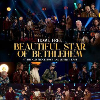 Beautiful Star of Bethlehem cover