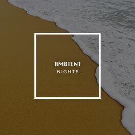 Album cover of # 1 Album: Ambient Nights