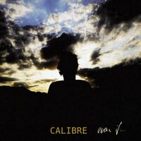 Section Dub - CALIBRE