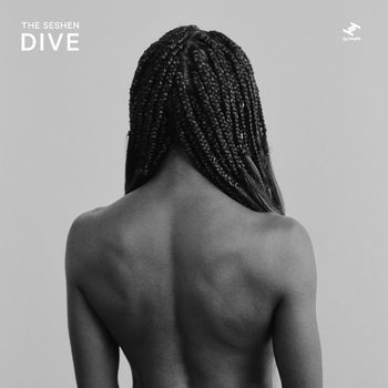 Dive cover