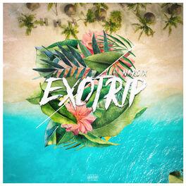 Album cover of Exotrip