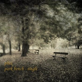 Park Bench cover
