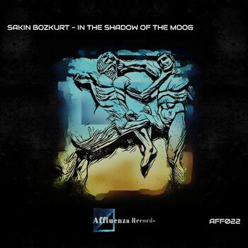 In the Shadow of the Moog cover