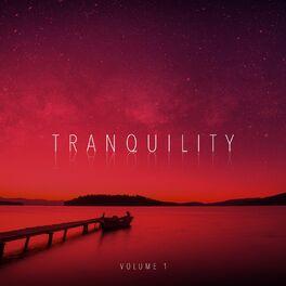 Album cover of Tranquility, Vol. 1