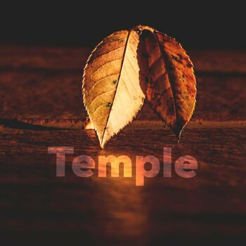 Temple cover
