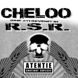 Parazitii rsr Cheloo – RSR (versuri)