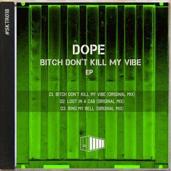 Bitch Don't Kill My Vibe cover