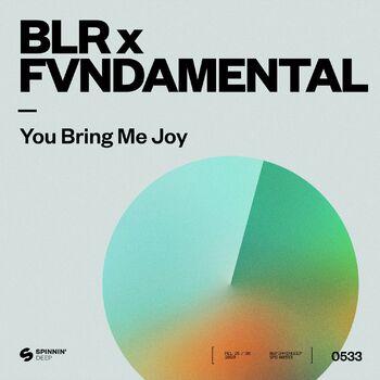 You Bring Me Joy cover