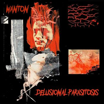 Delusional Parasitosis cover