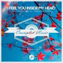 Album cover of I Feel You Inside My Head