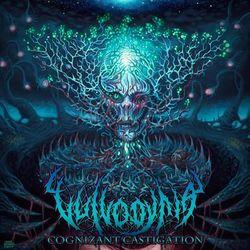 Vulvodynia – Cognizant Castigation 2014 CD Completo