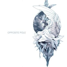 Album cover of Opposite Pole