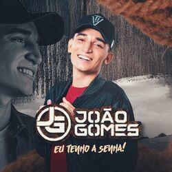 João Gomes – Eu Tenho a Senha 2021 CD Completo