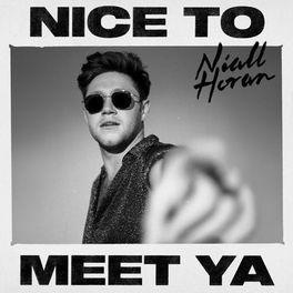 Album cover of Nice To Meet Ya