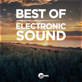 Album cover of The Best Electronic Sound, Vol. 1