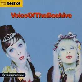 Album cover of The Best of Voice Of The Beehive