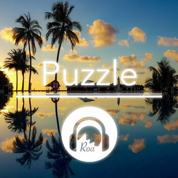Puzzle cover