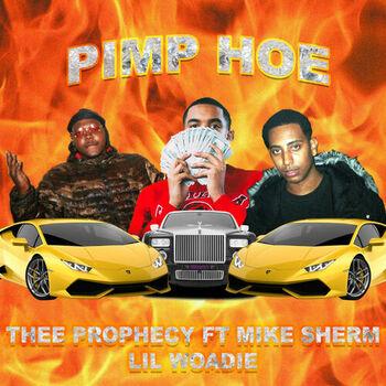 Pimp Hoe cover