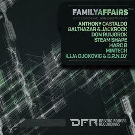Album cover of Family Affairs Vol.2