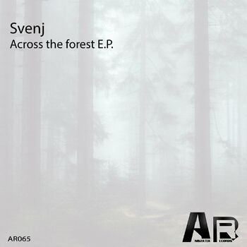 Across The Forest (Club mix) cover