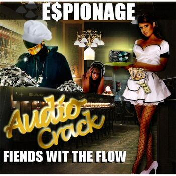 Audio Crack(Fiends Wit the Flow) cover