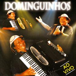 Dominguinhos – Ao Vivo 2006 CD Completo