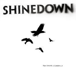 Album cover of The Sound of Madness
