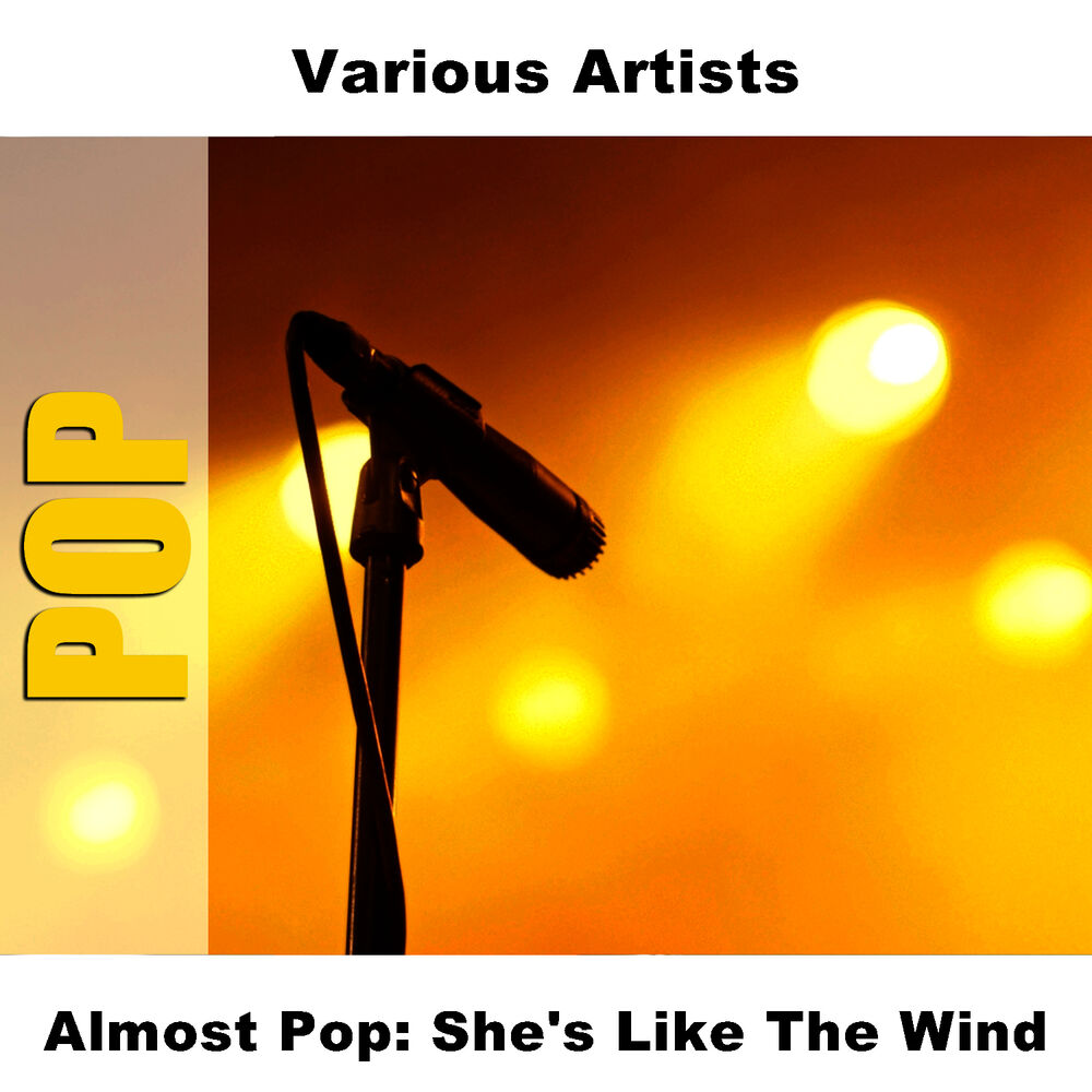 She's Like The Wind - Sound-A-Like As Made Famous By: Patrick Swayze