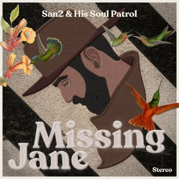 Missing Jane cover