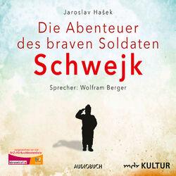 Die Abenteuer des braven Soldaten Schwejk (Gekürzte Lesung) Audiobook