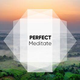 Album cover of # 1 Album: Perfect Meditate