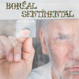 Album cover of Boreal Sentimental