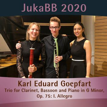 Trio for Clarinet, Bassoon and Piano in G Minor, Op. 75: I. Allegro cover