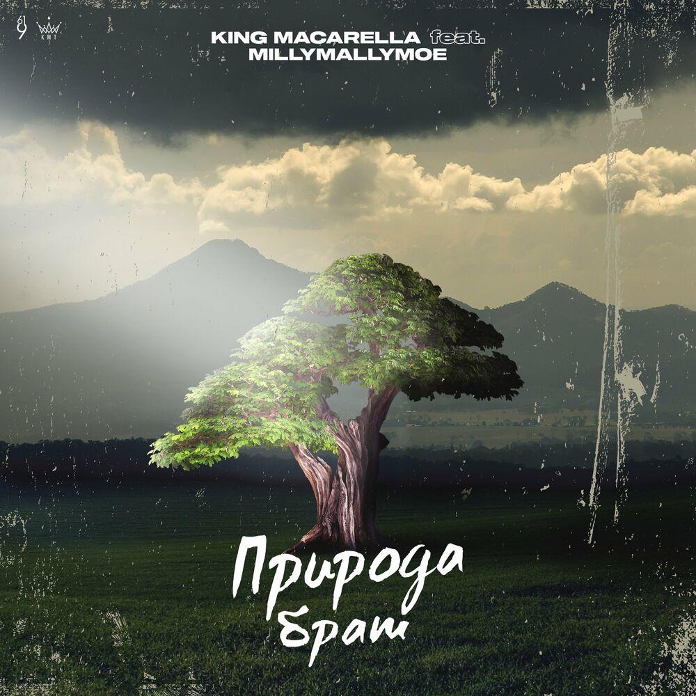 King Macarella - Природа брат (Original Mix)
