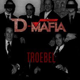 Album cover of Troebel