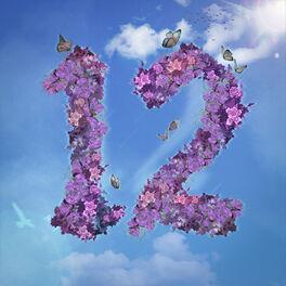 Album cover of 12