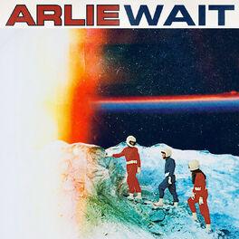 Album cover of Wait
