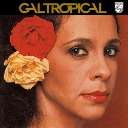 Download Gal Costa - Gal Tropical 2018
