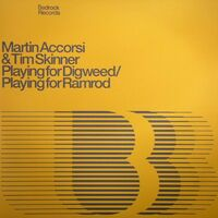 Playing For Digweed - MARTIN ACCORSI