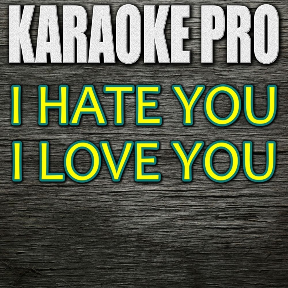 I Hate You I Love You (Originally Performed by Gnash feat. Olivia O'Brien) (Instrumental Version)