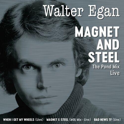 Walter Egan - Magnet And Steel (Redux Remaster Live): letras y canciones    Deezer