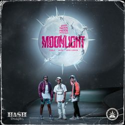 Pineapple StormTv, Alee, Chris MC, JayA Luuck, Hash Produções – Moonlight 2020 CD Completo