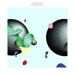 Album cover of Damp Suns