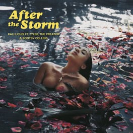 Album cover of After The Storm