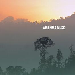 Album cover of Wellness Music