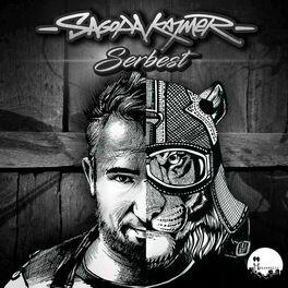 Album cover of Serbest