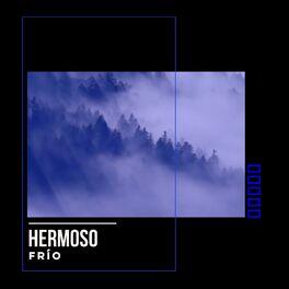 Album cover of Hermoso Frío