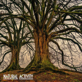 Album cover of Natural Activity